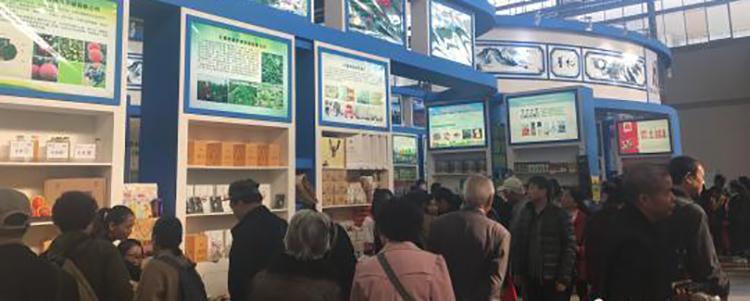 中国昆明国际农业博览会:云南高原特色农产品受热捧