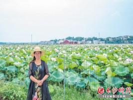 浏阳一餐饮老板走上生态农业路 拉动当地观赏经济发展