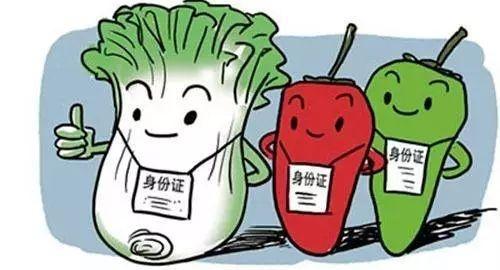 """农业农村部权威解读丨农产品质量安全追溯实现四""""挂钩"""""""