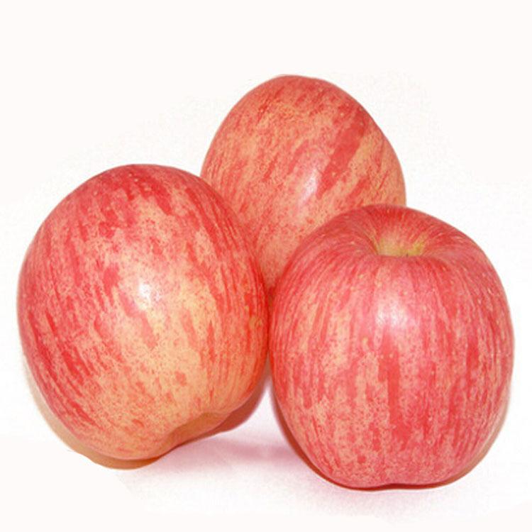 苹果 新鲜水果苹果 有机苹果 批发包邮