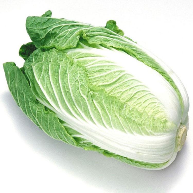 新鲜蔬菜 白菜