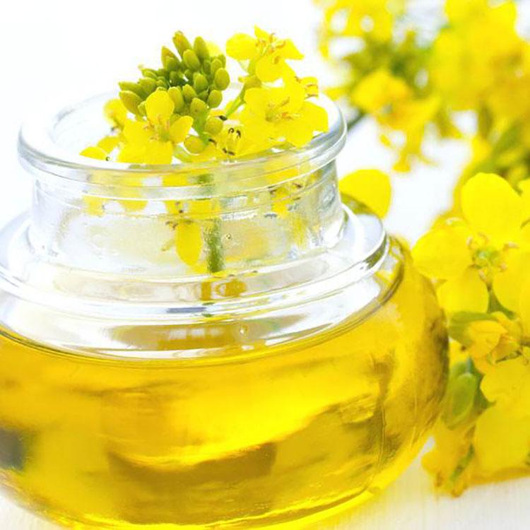 菜籽油 农家自榨菜籽油非转基因压榨纯菜籽油