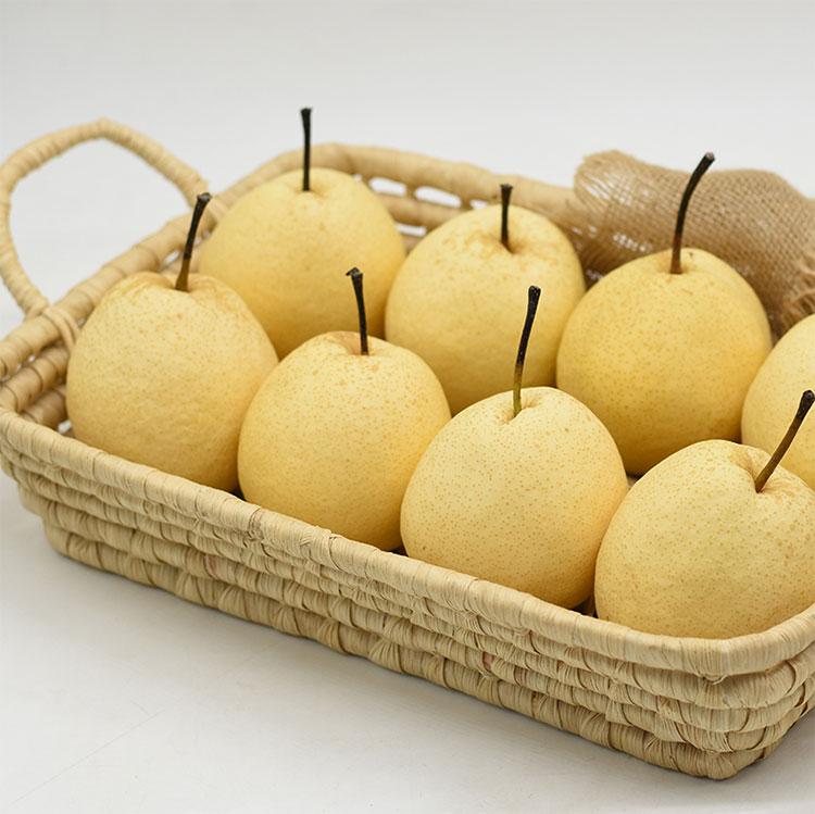 梨子 新鲜水果酥梨-贡梨