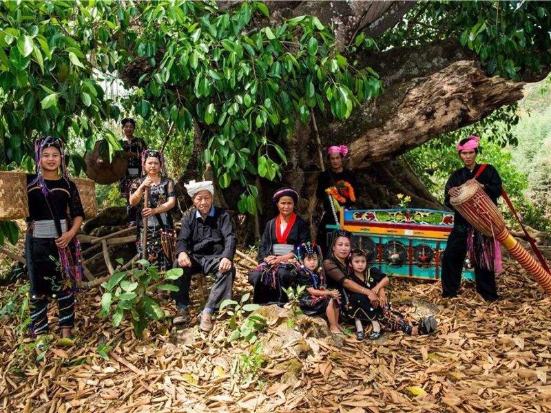 """滇西最早居民德昂族,为何自称""""茶树之子""""?其有哪些趣味性习俗"""
