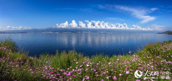 云南大理:洱海保护治理取得阶段性成效