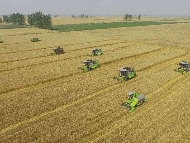 云南大理州加快培育新型农业经营主体