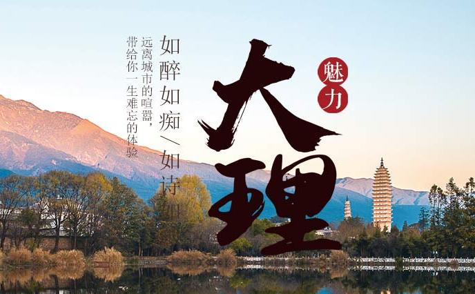 魅力大理网中文域名正式注册!!