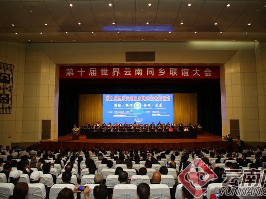 云南德宏發揮僑優勢 助力自貿試驗區建設
