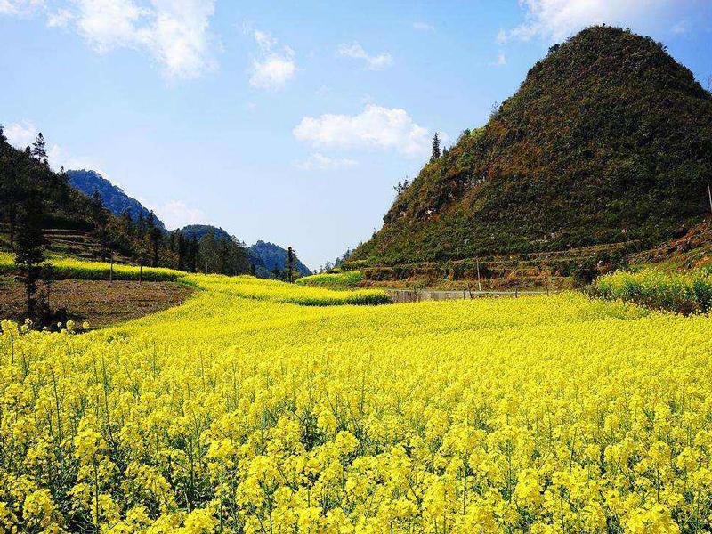云南省马关县,因其地多白马得名,此马关非马关条约签订之地