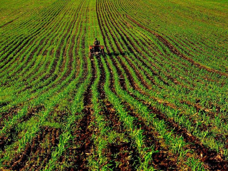 文山县冬季农业开发措施实