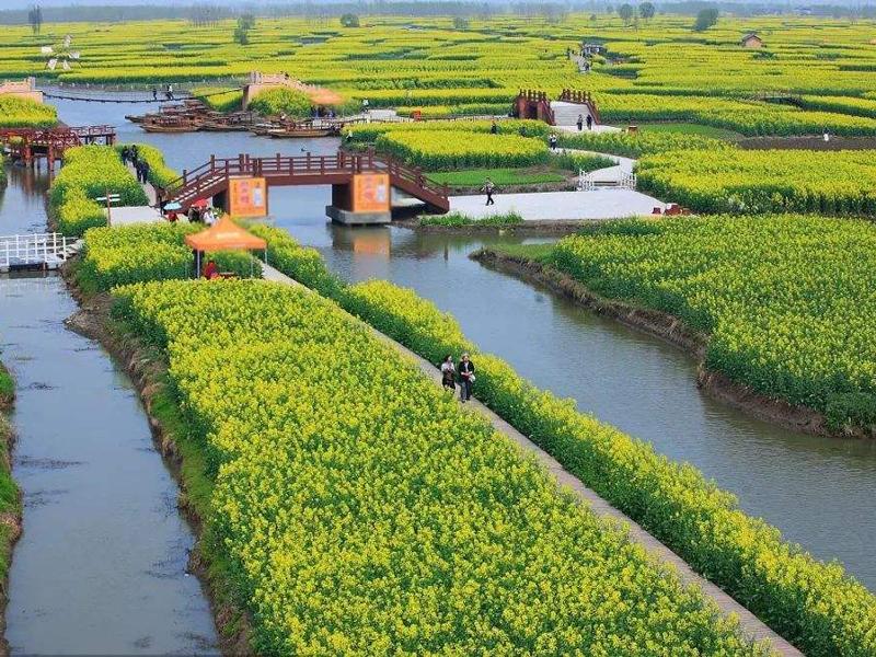 """破解""""三农""""的有力举措:文山县加快现代农业发展综述"""