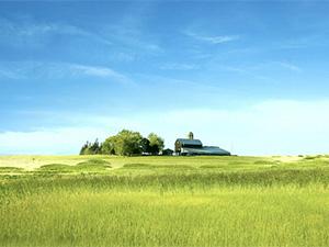 """《昆明市""""互联网+农业""""行动方案》将听证 拟建网上农贸市场 降低农产品流通成本"""