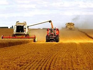 昆明成为高原特色农业典型代表
