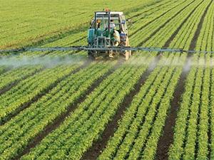 展会呈现昆明农业新风采