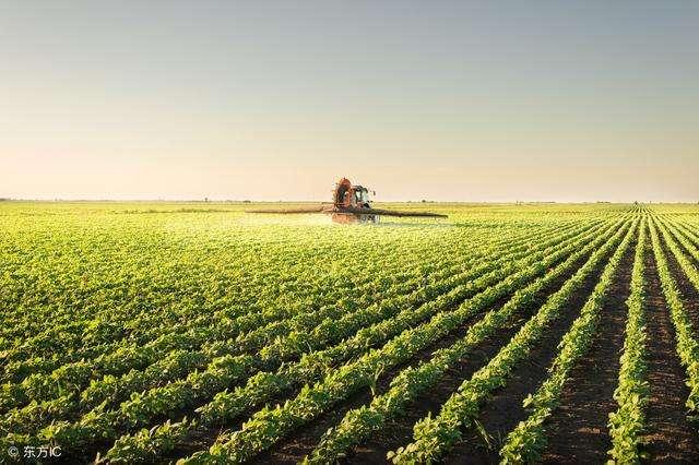 用品牌引领重庆特色农业高质量发展