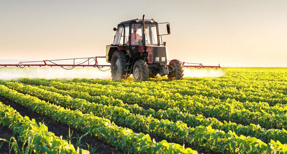 别把休闲农业做成观光景区