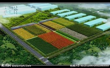 迈向农业农村现代化