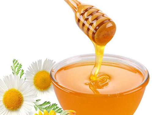 保护蜜蜂,让农业生产更有机