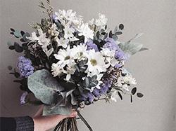 常见插花花材形态