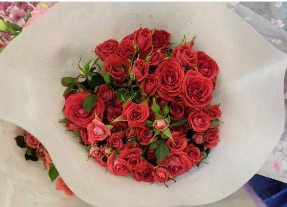 云南省花卉产业发展条例
