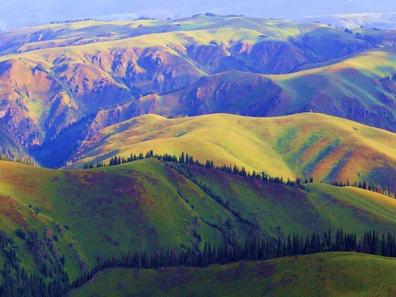 天山南北的新疆