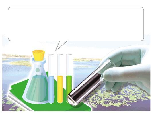 呼伦湖生态环保形势不容乐观