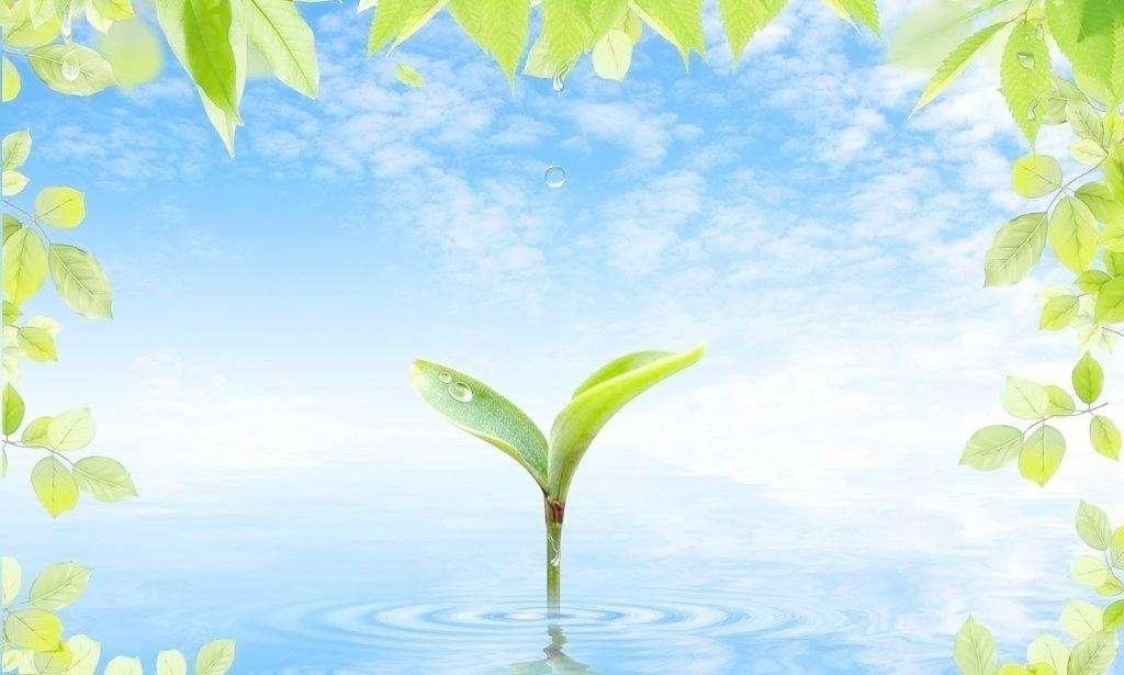绘就人与自然和谐共生美丽画卷——访湖北省生态环境厅厅长吕文艳