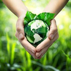 2019年全国大、中城市固体废物污染环境防治年报