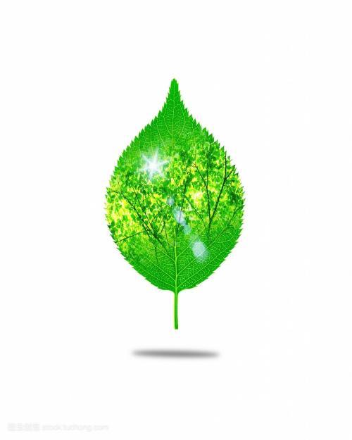 生态环境部新年首场例行新闻发布会:2019年污染防治攻坚战取得关键进展,生态环境质量总体改善