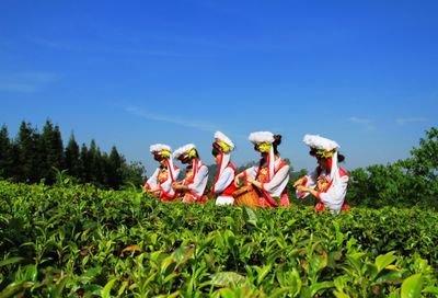 科技赋能云南高原特色现代农业绿色发展