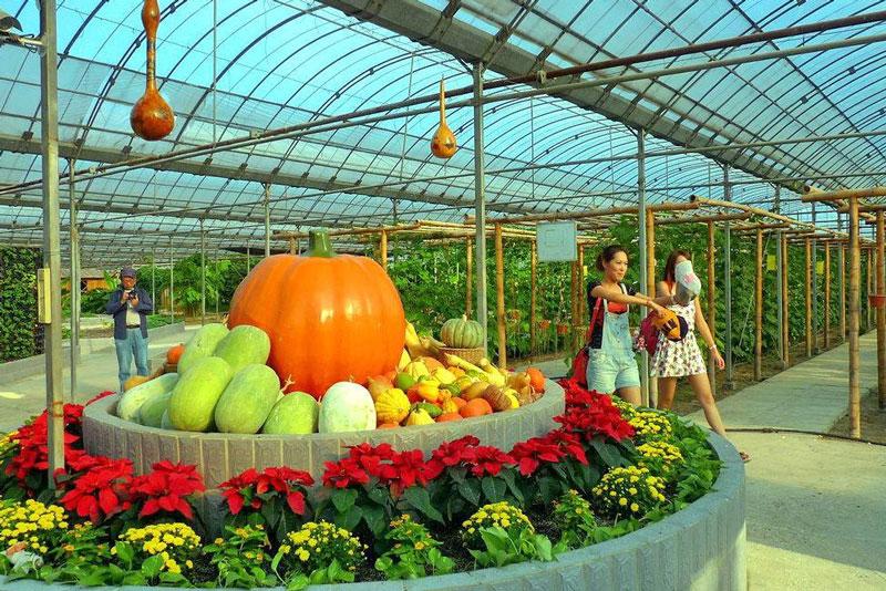 全国农产品产销对接行暨云南绿色食品推介会在保山举行