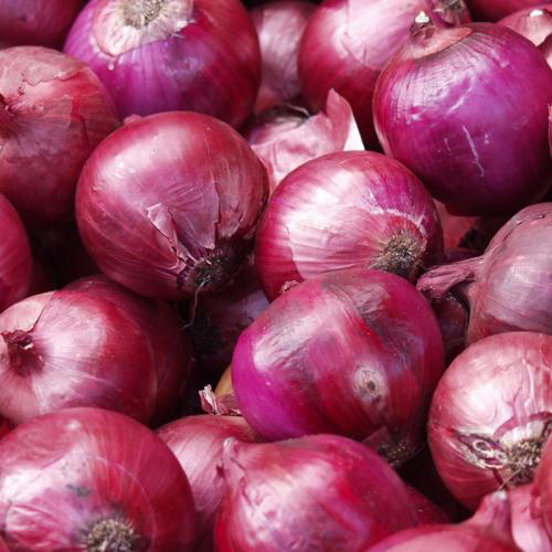 鲁甸紫皮洋葱