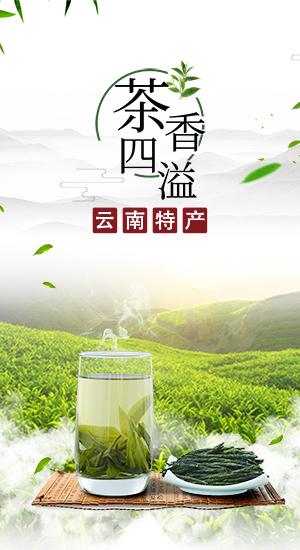 酒水茶饮广告