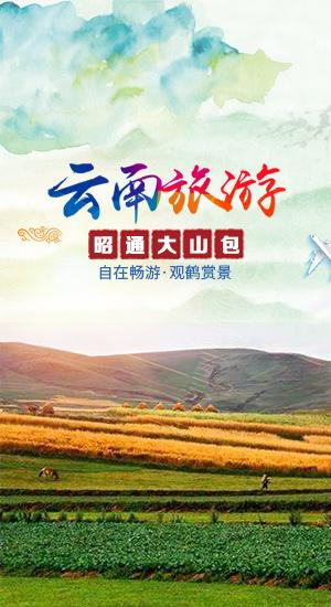 线路banner