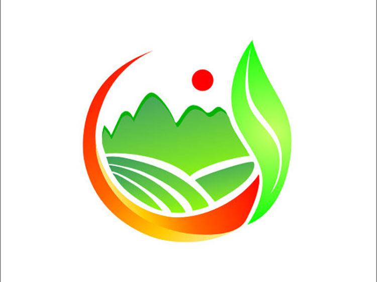 华坪县成宏种植有限责任公司