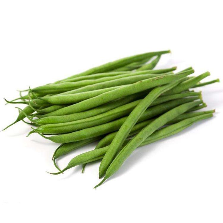 蔬菜种子春秋播 玉龙架豆王种子四季豆种子玉豆刀豆 豆角抗病高产